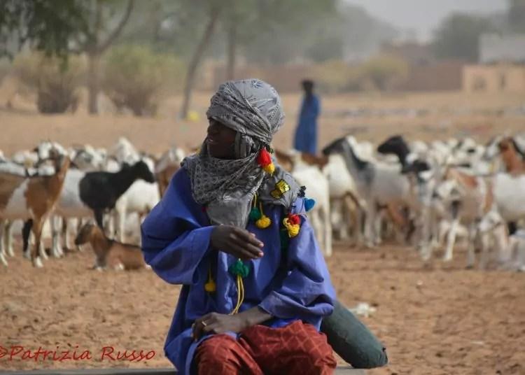 Senegal: Segatta, Il mercato degli animali (Ph. P.Russo/IT24).