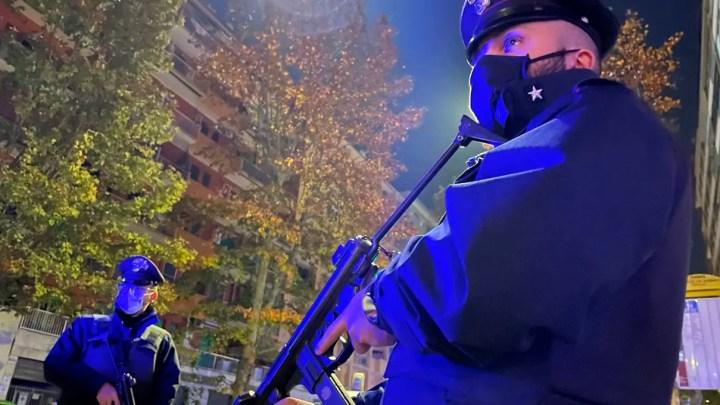 'Ndrangheta operazione Faust dei Carabinieri contro il clan Pisani a Rosarno, Polistena, Messina, Vibo Valentia, Salerno, Matera, Brindisi, Taranto, Alessandria e Pavia.