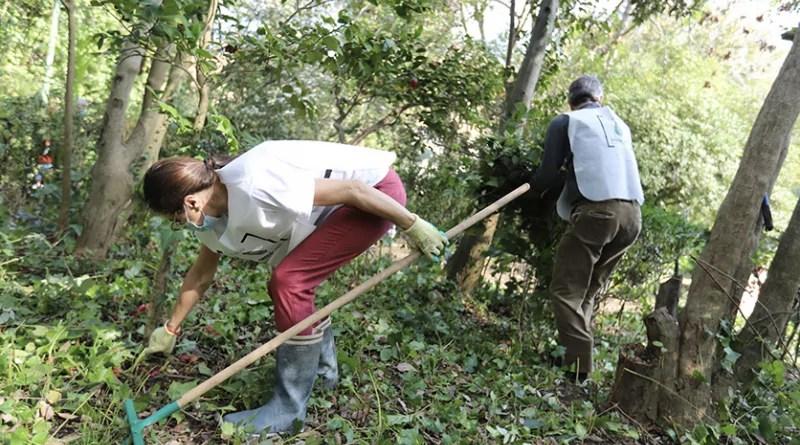 volontari cura del verde Villa Floridiana
