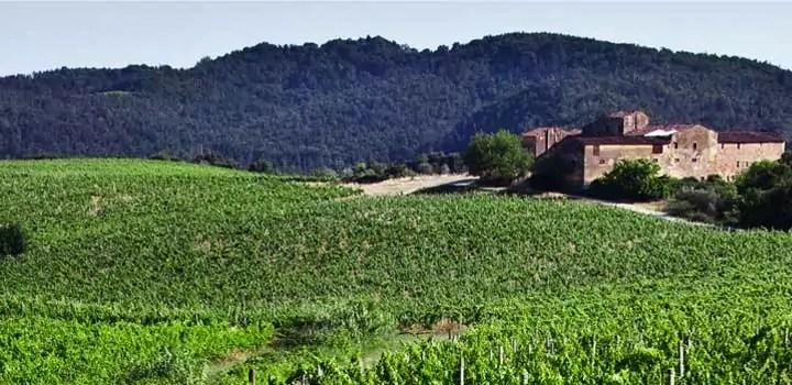 Carmignano strada dei vini