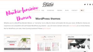 Bluchic feminine themes