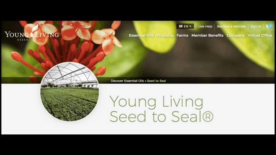 seed to seal essential oils