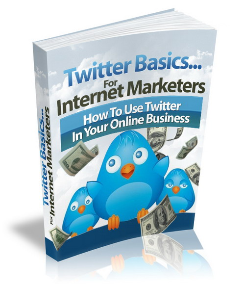 Introducing Twitter Basics For Internet Marketers 💲 How to Use Twitter in Your Online Business