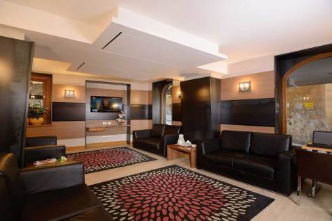 Hotel Trevi Rome, Italie : Salon