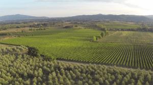 wijngaarden la vialla