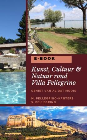villa pellegrino ebook
