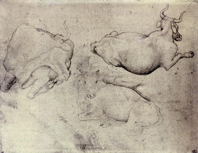 Pisanello, Drie koeien, 1430, zilverpunt, Musée du Louvre, Parijs