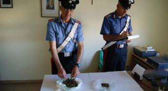 Comiso, incensurato arrestato dai CC con 120 grammi di marijuana