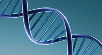 Biotecnologie: finanziamenti per progetti di PMI