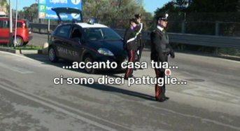Cavalli di ritorno. Scoperto dai carabinieri un mercato parallelo per recuperare mezzi rubati: 10 arresti