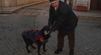 """Acate :Alessandro Castagna, l'amico degli animali. """"Pucci"""", un'anziana cagna adottata dagli acatesi."""