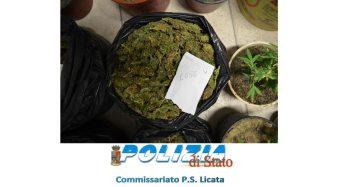 Licata. Due arresti per droga della polizia di stato