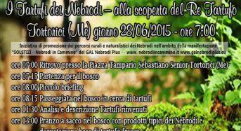 I tartufi non solo ad Alba ma anche a Tortorici (ME) e nei Nebrodi