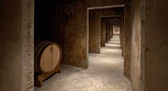 I segreti del negroamaro e del primitivo  Col wine tour di Claudio Quarta Vignaiolo