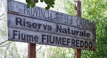Riserva naturale di Fiumefreddo, la Città Metropolitana pronta a collaborare con i comuni di Calatabiano e Fiumefreddo