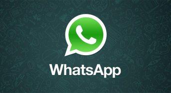 Truffe online. Occhio al messaggio bufala su Whatsapp che invita a controllare le informazioni a pena di disattivazione dell'app