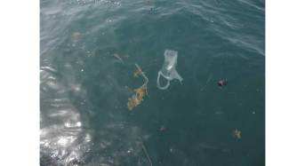 La zuppa di plastica del Mediterraneo
