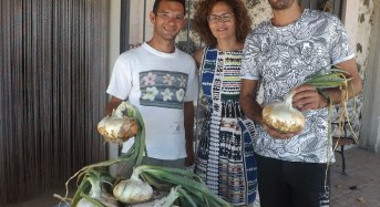 La cipolla di Giarratana, i giovani riscoprono le tradizioni