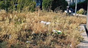 """Ragusa, Distefano e Occhipinti (Territorio):""""Piazza del Popolo in stato di abbandono"""""""
