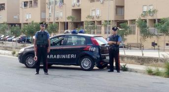 Palermo, controlli dei Carabinieri. Scattano denunce e sequestri