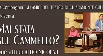 Mai stata sul cammello? Prima assoluta degli Amici del Teatro il 25 agosto al Parco di Kaukana