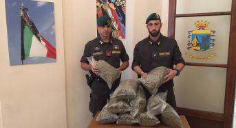 Catania. Sequestrati 10 kg di marijuana: Arrestato un corriere catanese