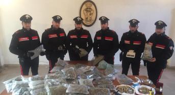 Palermo. Maxisequestro di stupefacenti a settecannoli: 4 arrestati