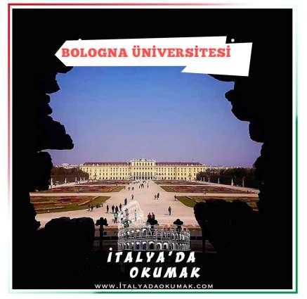 bologna-universitesi-master