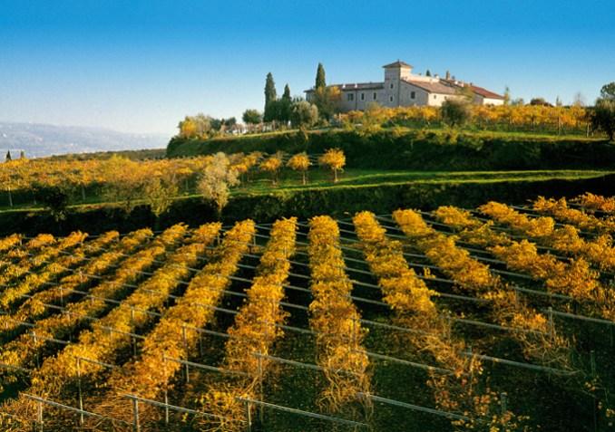 Veneto for Foodies | ITALY Magazine