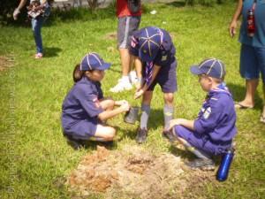 Escoteiros fizeram plantio de árvores para mata ciliar (Divulgação)