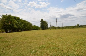 Ampla área irá abrigar atividades da Uipa (Divulgação)