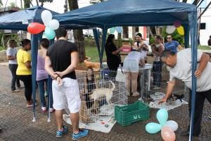 Evento na Praça expôs diversos cães ao público (Divulgação)