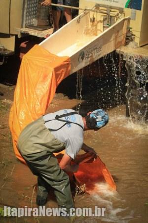 Peixes foram fornecidos pela empresa que administra a represa