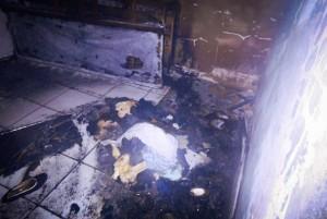 Cômodo em que os cães estavam ficou destruído (Portal Mogi Guaçu)