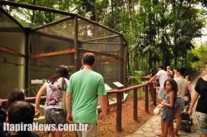 Movimento grande marcou reabertura do zoológico