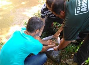 Nova ação ambiental beneficiou Ribeirão da Penha (Divulgação)