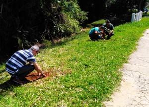 Plantio abrangeu áreas de mata ciliar (Divulgação)