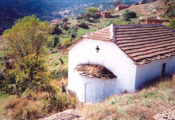 Св. Димитриј, с. Брник (Church St. Dimitrij, village Brnik)