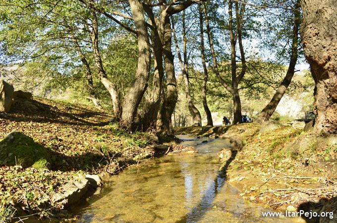 konjarska reka 5