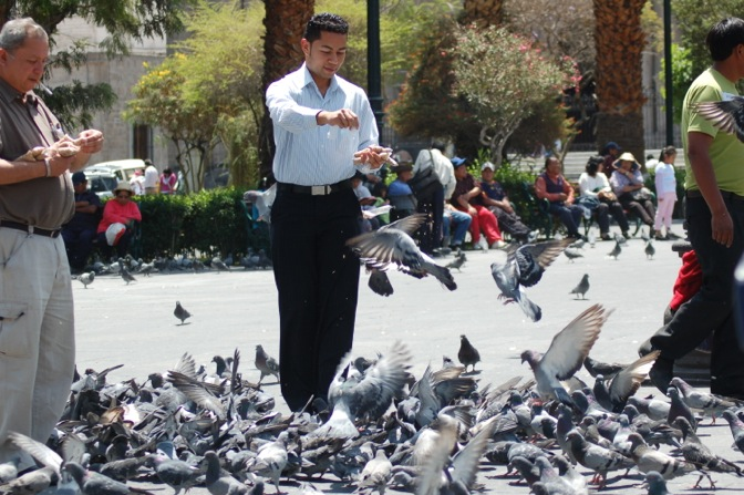 Feeding the pigeons in Arequipa, Peru