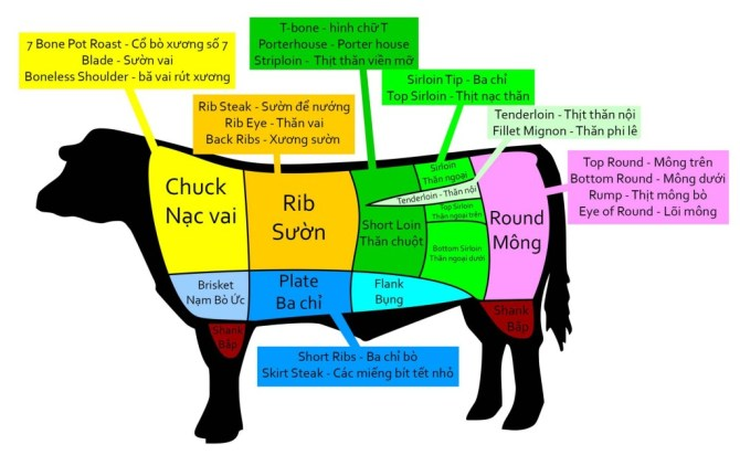 A chart that shows cuts of beef in English and Vietnamese