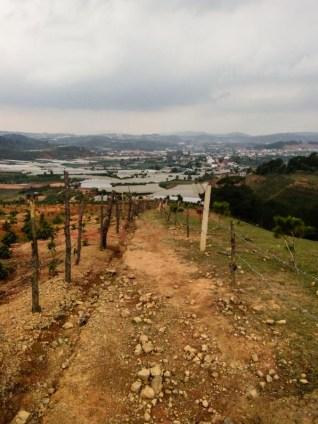 Langbiang hiking trail