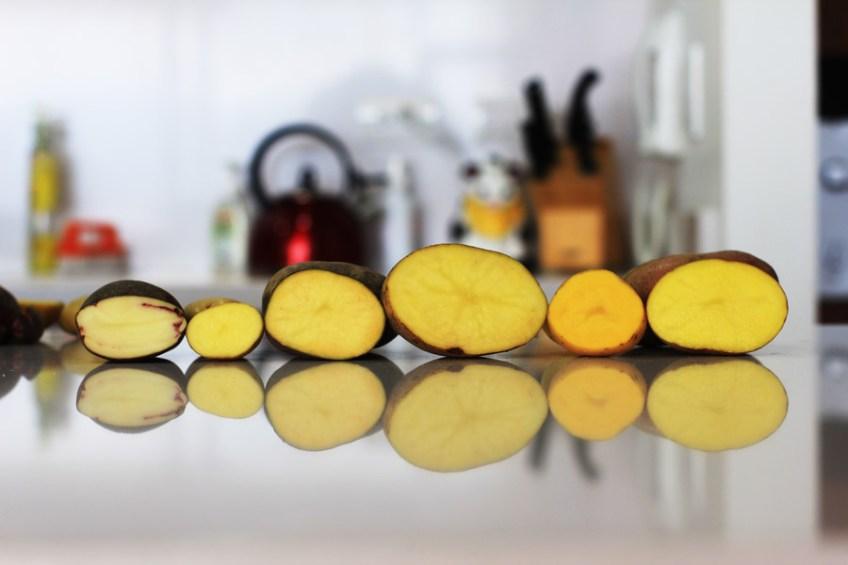 6 varieties of potatoes in Ecuador