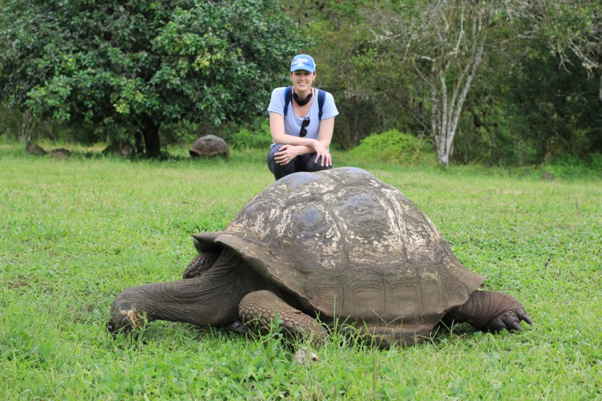 sara and a giant tortoise in the Galapagos