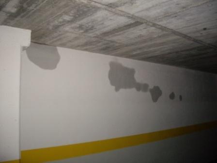 humedad muro