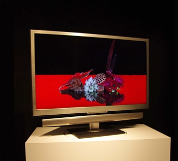 Sharp XS1 Series AQUOS LCD TV