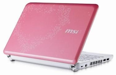 MSI Wind U100 Valentine Edition