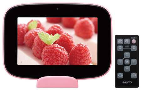 Sanyo ALBO HNV-S70 Home Network Viewer pink