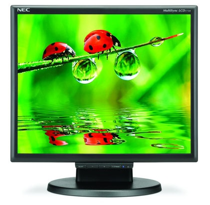 NEC MultiSync LCD175M 17-inch LCD Display