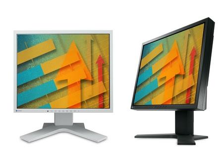 EIZO FlexScan S1721-X 5-4 LCD Monitor